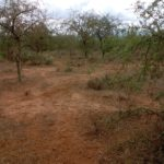 50 Acres of Land – Maili Tisa Kajiado County